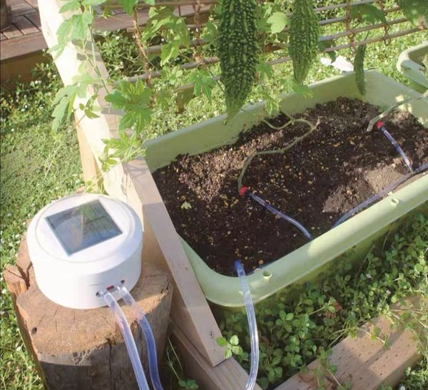 Self Watering System For Your Plants While You Are Away