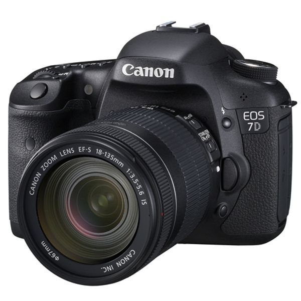 7d Body For Rent