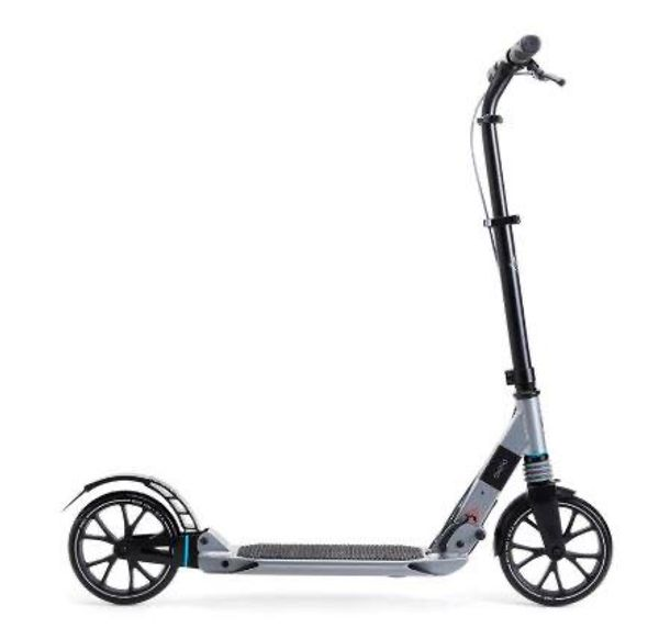 Kick Adult Scooter
